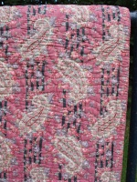paisley_and_pink_res_7